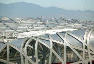 Workers stand on top of National Stadium in Beijing